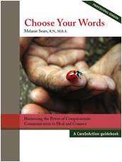 Choose Your Words Professional Edition by Mel Sears
